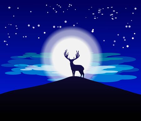 Animal Silhouette Moonlight in nature wildlife