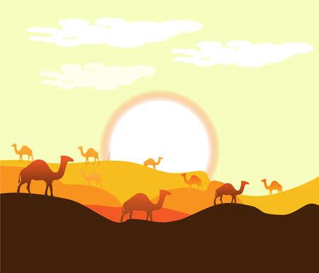 Sahara Arabic Desert on hot summmer background