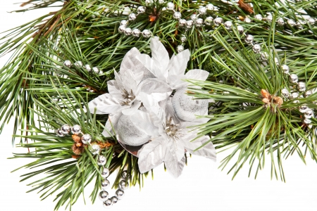 Green pine brach with Christmas composition on white background Stock Photo - 15311658