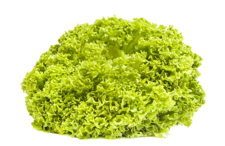 Fresh green iceberg salad isolated on white background Stock Photo