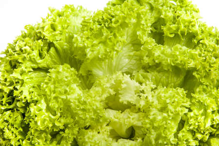 Fresh green salad lettuce leaves close view photo