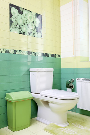 Bathroom design in green colors with toilet