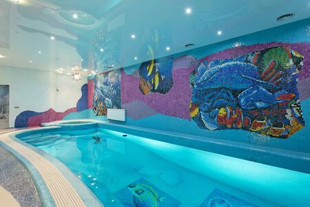 Spa swimming pool design with mosaic fish on the wall and blue mosaic