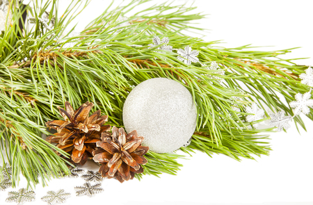 Christmas composition with fir tree, cones and silver ball