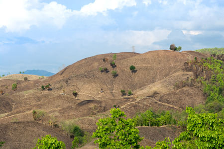 The problem of deforestation in the North Mountain in Thailand