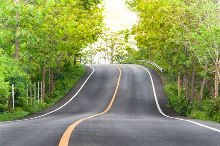 both sides: Countryside road with trees on both sides,Curve of the road