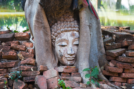 provenance: buddha head in banyan tree in archaeological site Northern Thailand,Tradition Thai Art