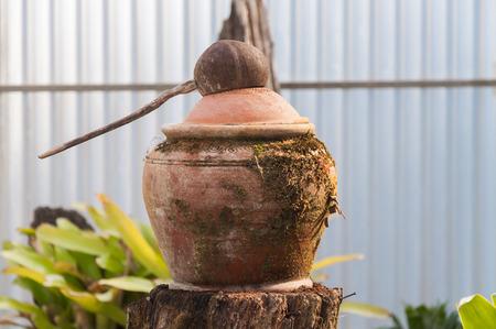 Cuchara de coco y olla de barro con musgo