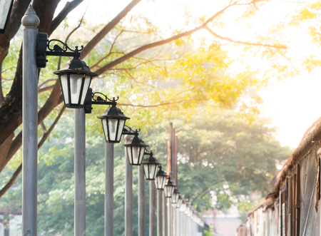 city lights: Street lamp or Vintage lamp in the garden,Lantern in a blooming spring park
