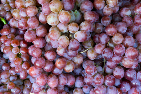 Red wine grapes background,dark grapes