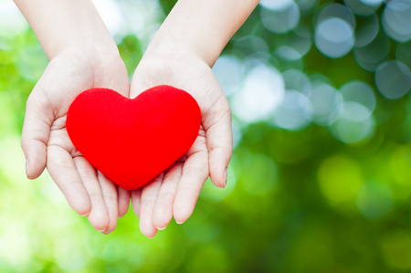 Close up Red heart in woman hands, isolated on green nature background,health, medicine, people and cardiology concept Stock Photo