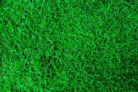 Natural Green grass texture. Perfect Golf or football field background. Top view Фото со стока