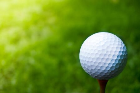 Green grass with golf ball close-up in soft focus at sunlight. Sport playground for golf club concept ,Golf ball on tee ready to be shot