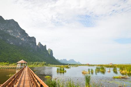 Wooden Bridge in lotus lake at khao sam roi yod national park, thailand photo