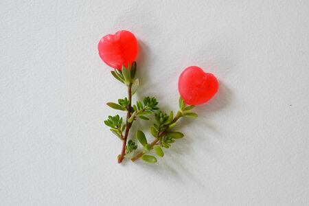 romantics: Artificial flowers made from sweet candy heart shape.