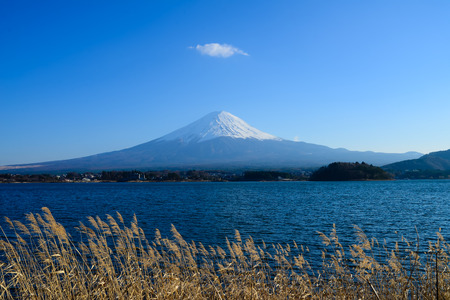mt: Fujisan Mt. Fuji in the sunny sky  Kawaguchiko Japan