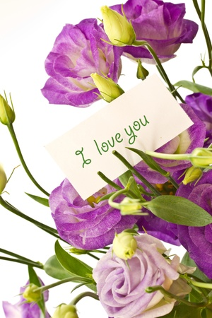 beautiful bouquet of purple flowers on white Lisianthus Stock Photo - 10963393