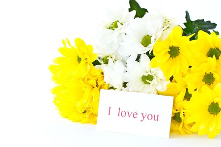 beautiful bouquet of yellow chrysanthemums on a white background Stock Photo - 10991790
