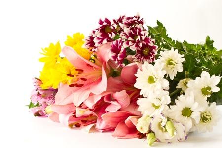 在白色背景上美麗的多種顏色的花