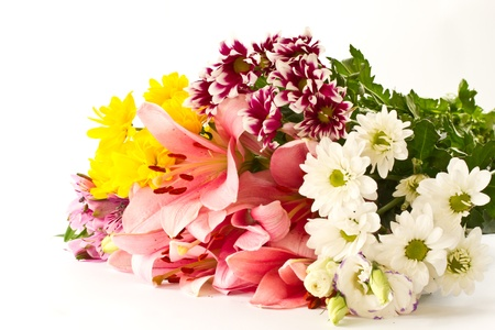 beautiful multi-colored flowers on a white background Stock Photo