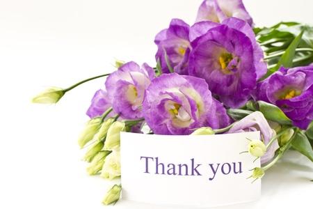 agradecimiento: hermoso ramo de violetas lisianthus sobre un fondo blanco