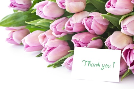 beautiful bouquet of purple tulips from the set photo