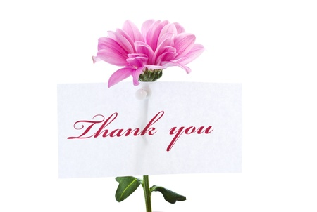 say thank you on a background of beautiful flowers photo