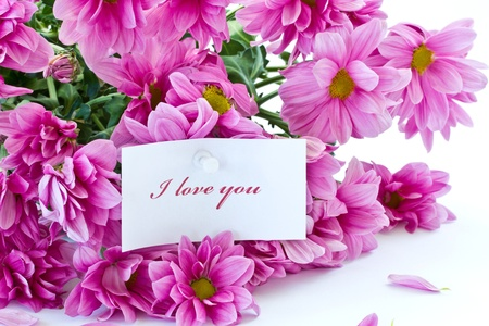 says I love you on a background of beautiful flowers photo