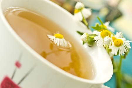 chamomile tea on a background of fresh beautiful daisies photo