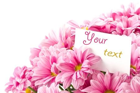 boeket van roze bloemen op een witte achtergrond Stockfoto