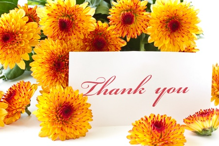 thank you on a background of orange chrysanthemums