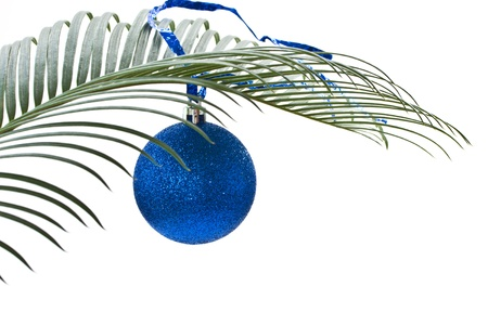 New blue ball on the palm-branch on a white background photo