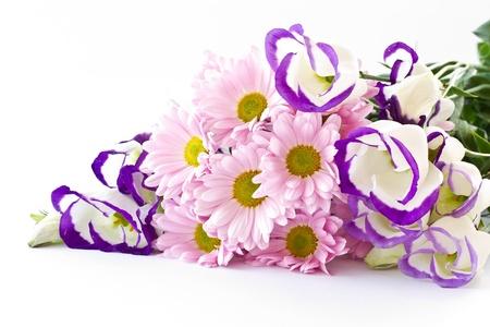在白色背景上一束美麗的花朵 版權商用圖片