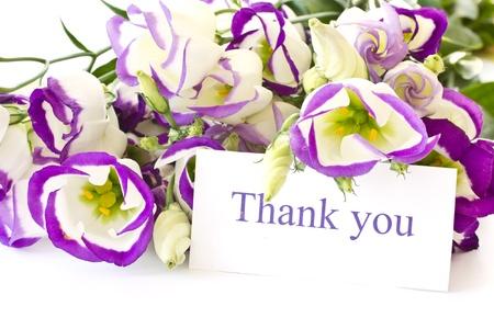Lisianthus mooie bloemen op een witte achtergrond