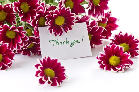 thank you card: a bouquet of beautiful purple chrysanthemums on white background Stock Photo