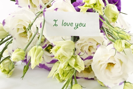 declaration of love against the backdrop of beautiful flowers lisianthus Stock Photo - 11889125