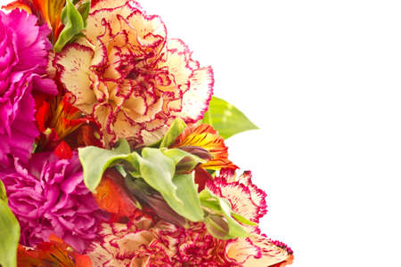 bouquet of red carnations and chrysanthemums on white background photo