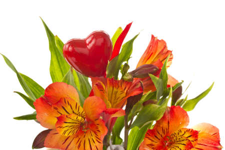 red flowers of Alstroemeria in a bucket on a white background photo