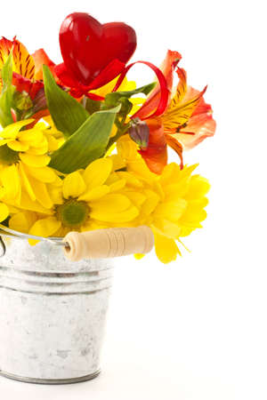 Yellow chrysanthemums in a bucket on a white background photo