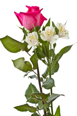 red roses and white Alstroemeria on a white background photo