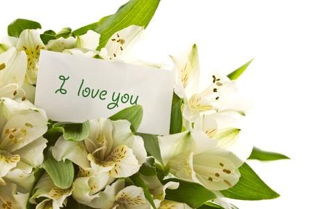 beautiful bouquet of white alstroemeria on a white background photo