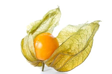 physalis: Physalis bayas maduras de color amarillo sobre un fondo blanco