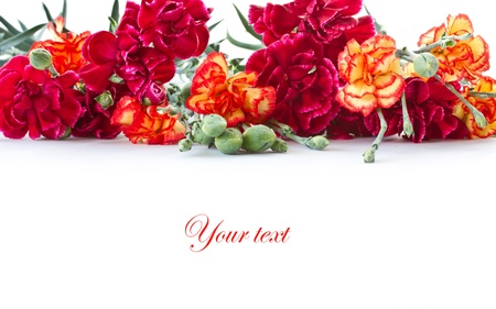 beautiful bright bouquet of carnations on a white background photo