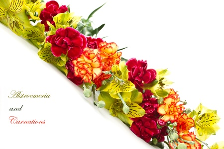 Alstroemeria and red carnations on a white background Stock Photo - 12973391