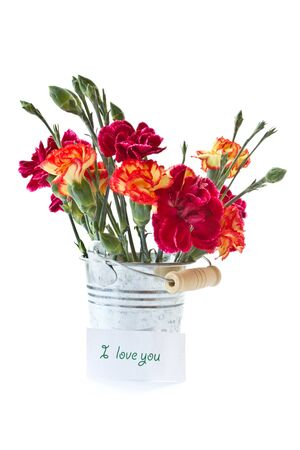 bright bouquet of carnations in a bucket on a white background photo