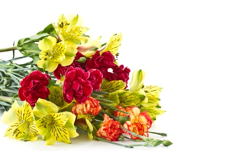 Alstroemeria and red carnations on a white background Stock Photo - 12973419