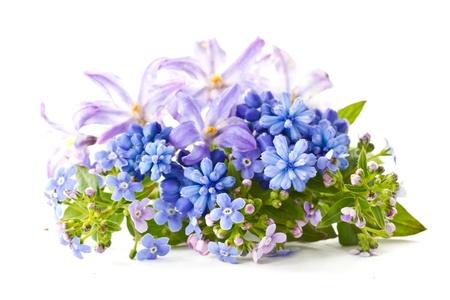 mooi boeket van de lente bloemen op een witte achtergrond