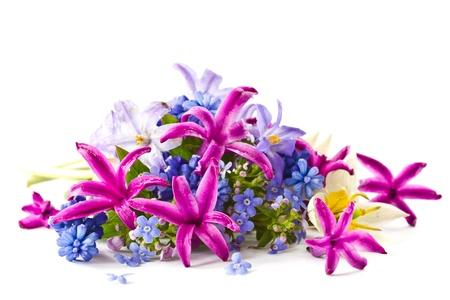在白色背景上美麗的花束春天的花朵 版權商用圖片