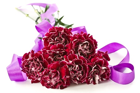 beautiful bouquet of red carnations on a white background Stock Photo - 13277057