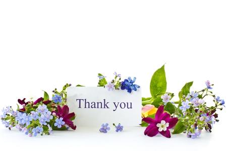 Strauß von Frühlingsblumen auf weißem Hintergrund Standard-Bild - 13401042